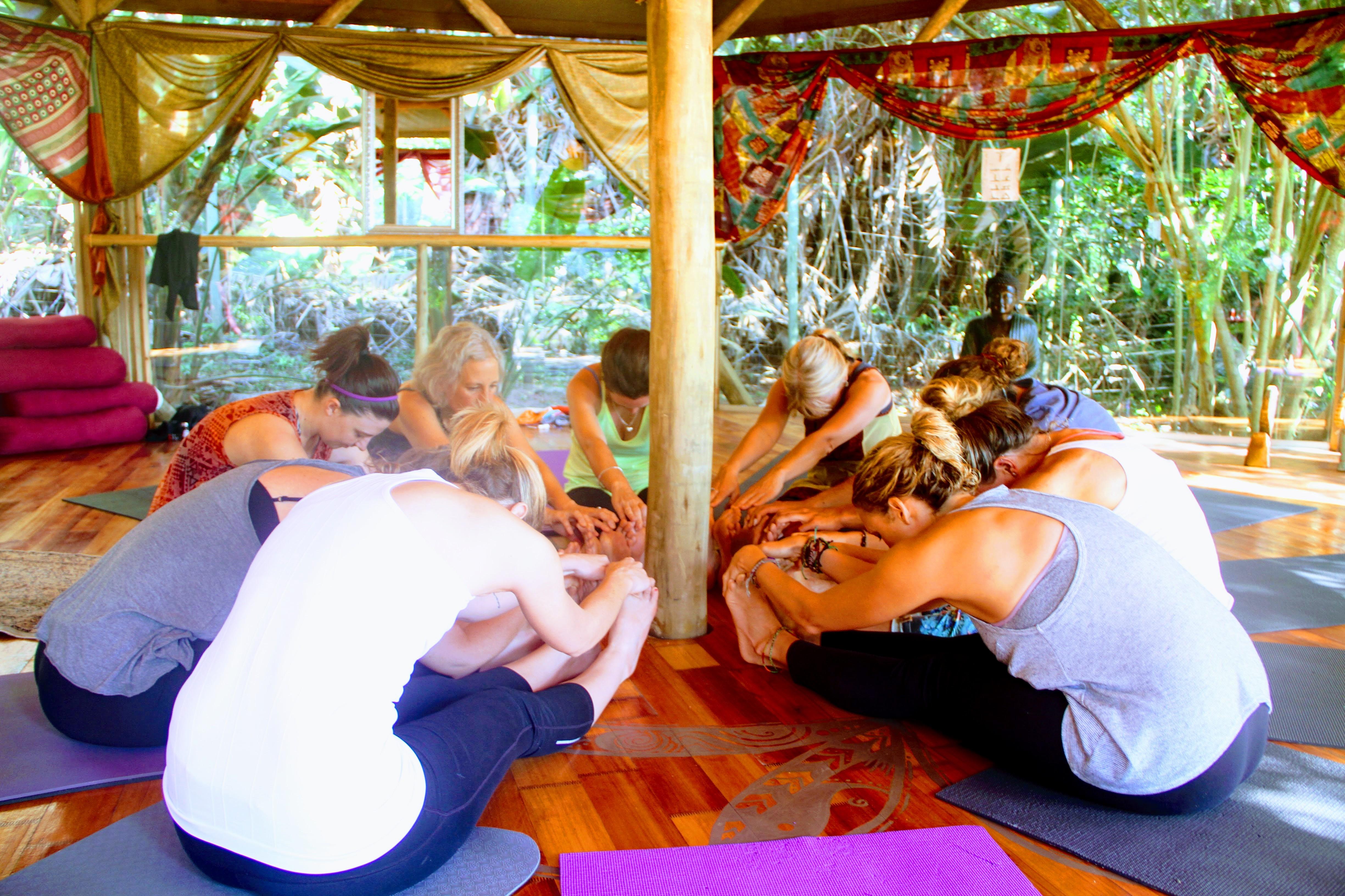 YA alliance yoga registered