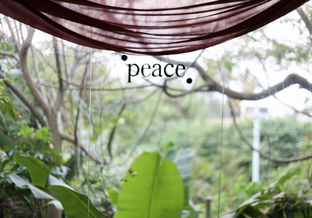 peace serenity yoga retreat yoga south africa hohm yoga mantis and moon